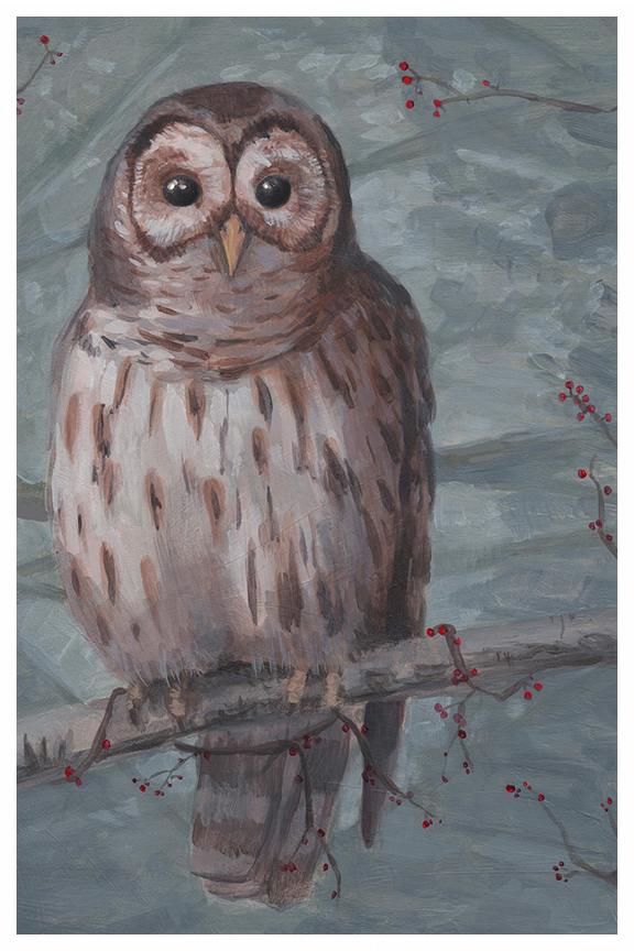 Owl drawing by Kayla Woodside